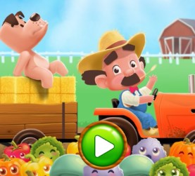 Farm Fever Game